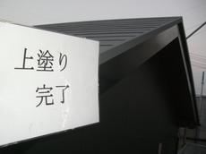 CIMG3038.JPG