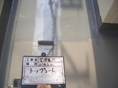 CIMG3995.JPG