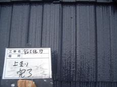 CIMG4061.JPG
