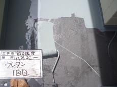 CIMG4090.JPG