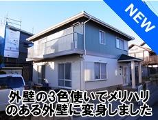 R0027464bana.JPG